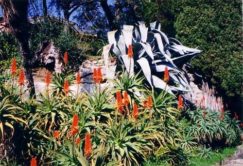 Exotische planten (c) Srsck