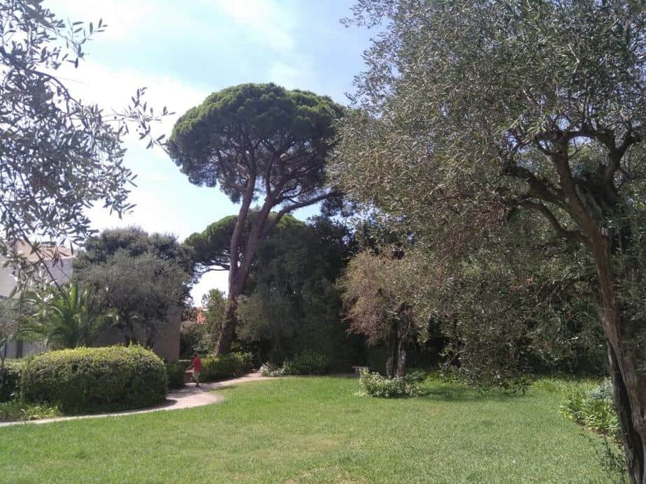 chagall garden