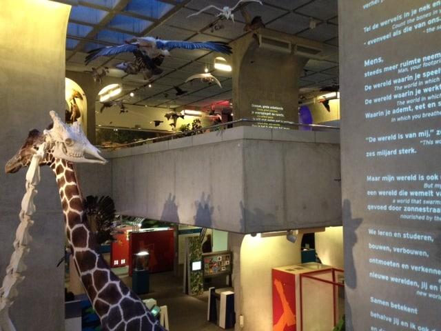Veel te zien in Museon (c) Srsck