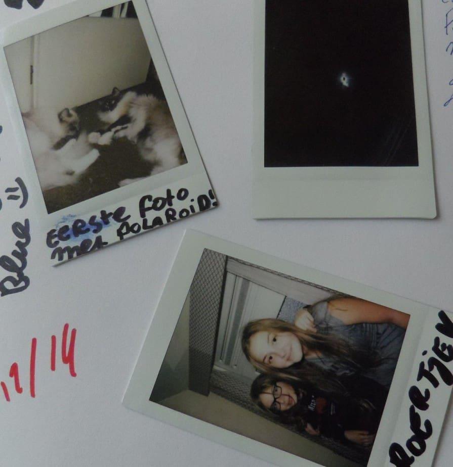 Eerste drie foto's