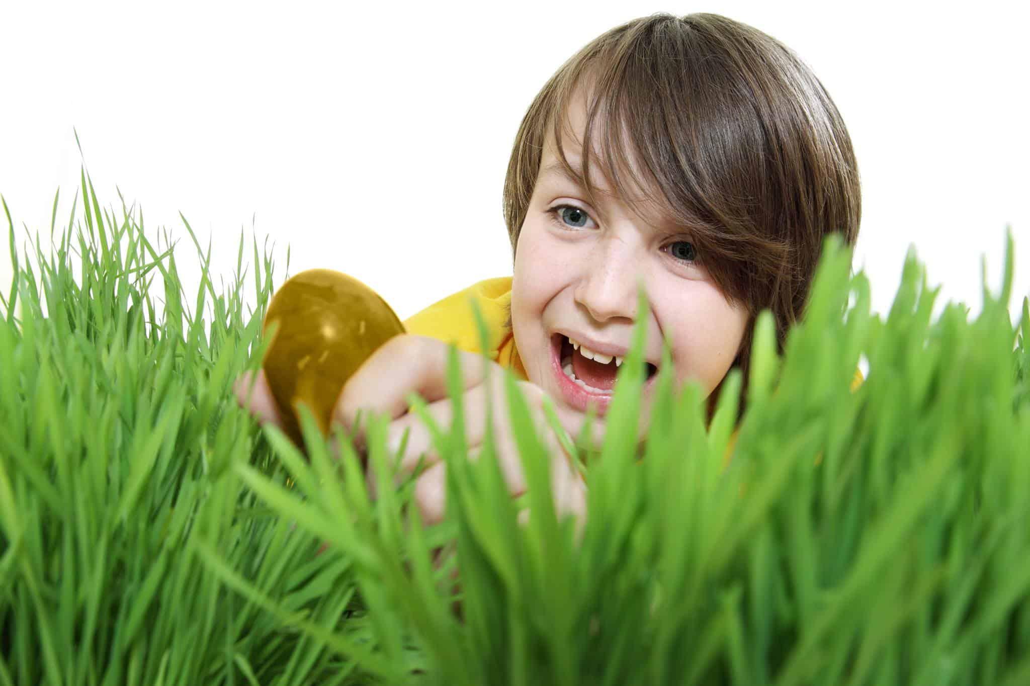 Zoek het Gouden ei
