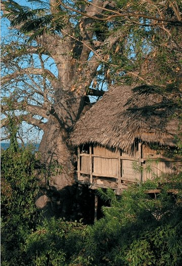 Chole Mjini boomhut hotel