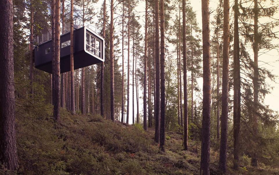 boomhut hotel Zweden