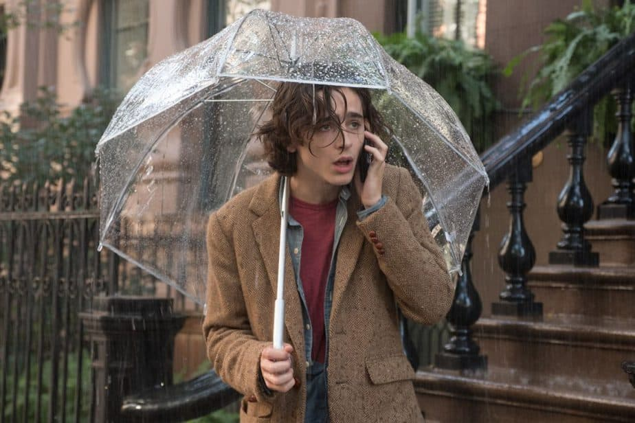 recensie a rainy day in new york