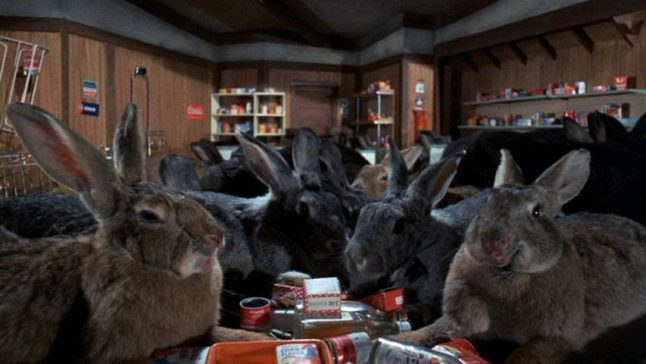 konijnen in night of the lepus