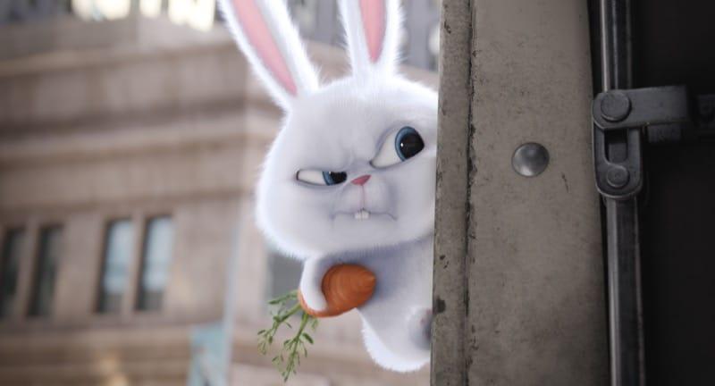 snowball konijn film