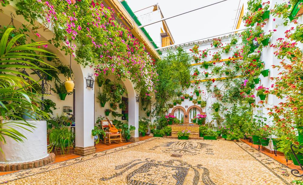 droomhuis patio