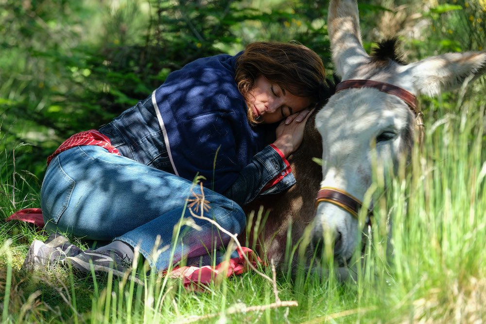 wandeltocht ezel cevennen